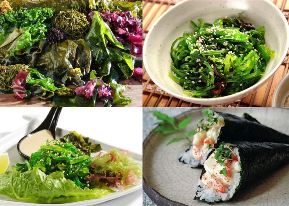 Les algues marines, un atout santé naturel .jpg